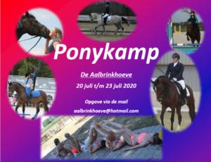 Ponykamp @ De Aalbrinkhoeve